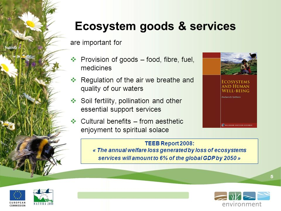 5 Ecosystem goods & services are important for Provision of goods – food, fibre, fuel, medicines Regulation of the air we breathe and quality of our w