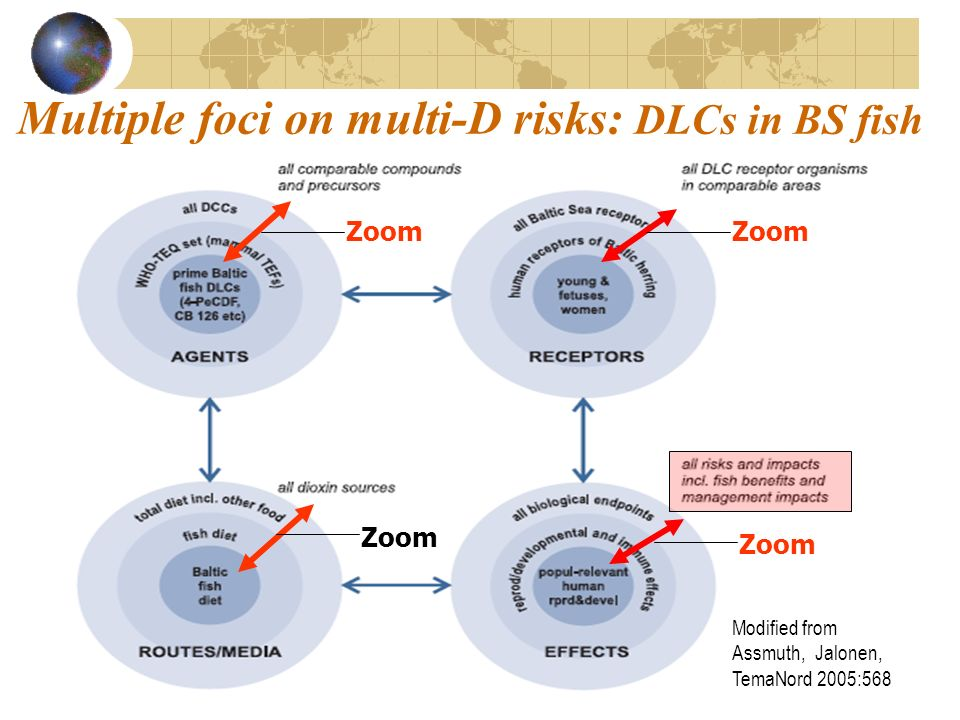 Multiple foci on multi-D risks: DLCs in BS fish Modified from Assmuth, Jalonen, TemaNord 2005:568 Zoom