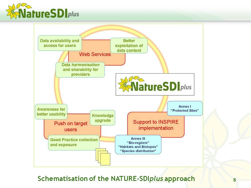 Schematisation of the NATURE-SDIplus approach 5