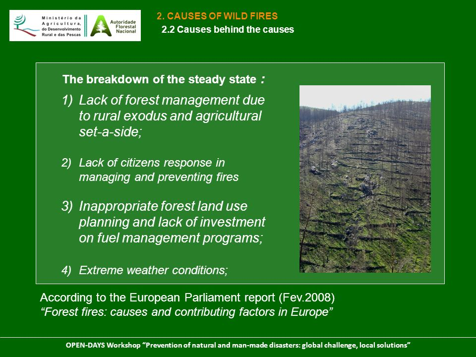 OPEN-DAYS Workshop Prevention of natural and man-made disasters: global challenge, local solutions Shrubs Forest stand Be aware of paradox: As time goes by after a disaster increases the probability of a new disaster.