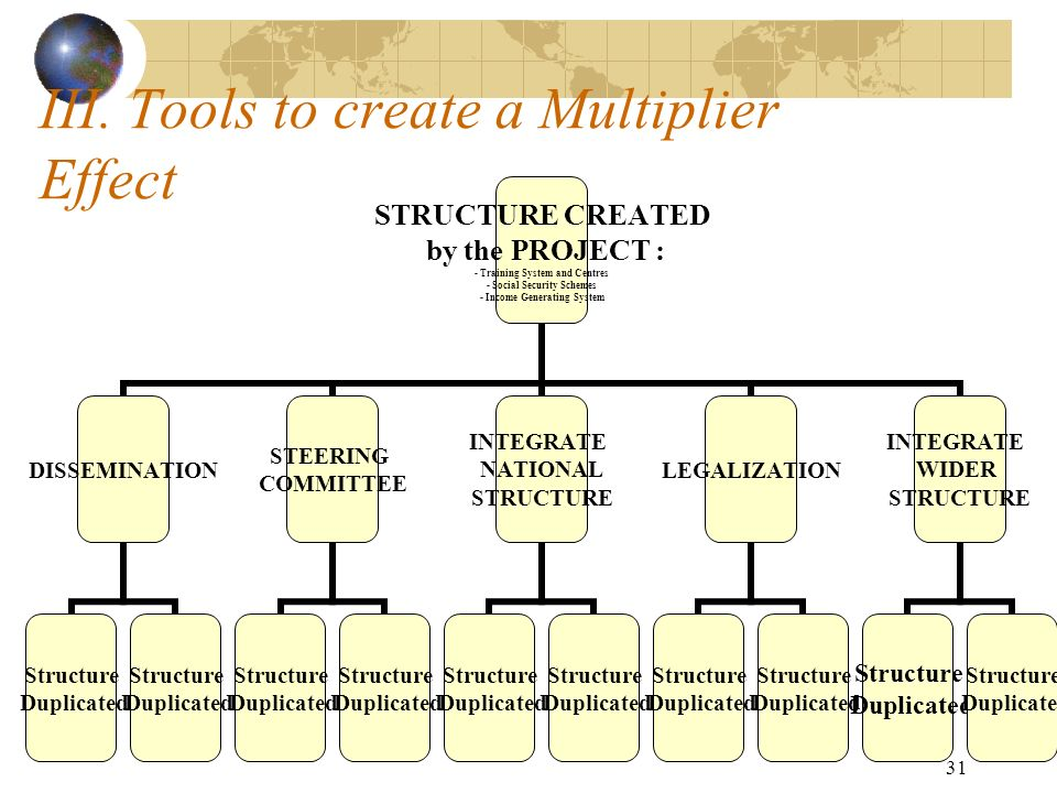 31 III. Tools to create a Multiplier Effect STRUCTURE CREATED by the PROJECT : - Training System and Centres - Social Security Schemes - Income Genera