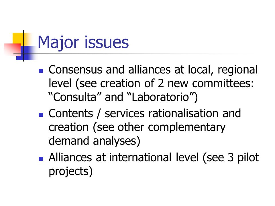 Major issues Consensus and alliances at local, regional level (see creation of 2 new committees: Consulta and Laboratorio) Contents / services rationalisation and creation (see other complementary demand analyses) Alliances at international level (see 3 pilot projects)