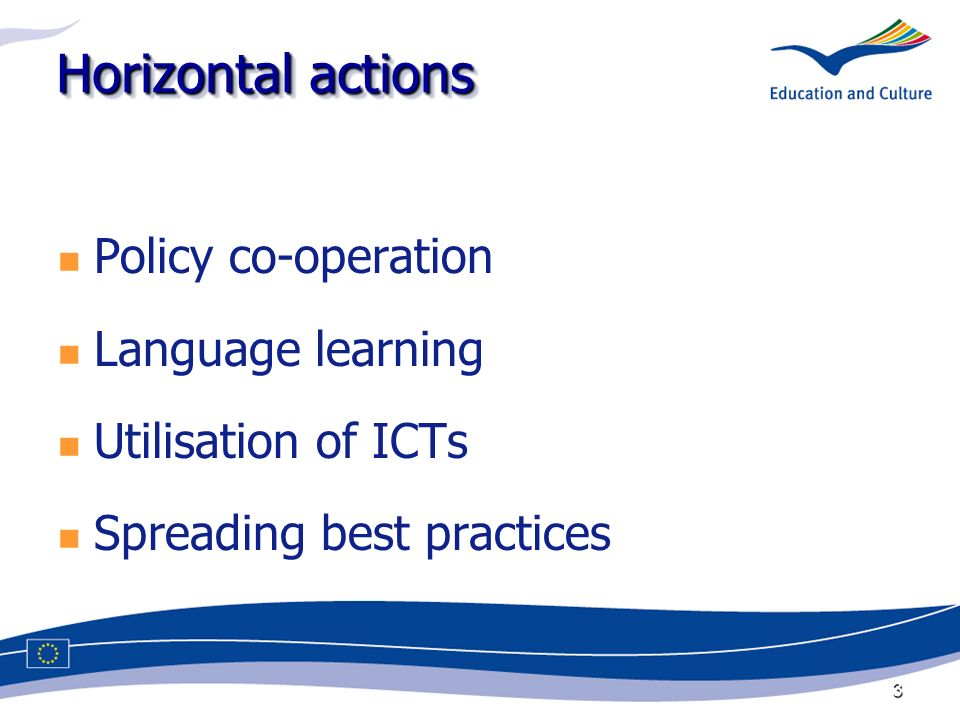 3 Horizontal actions Policy co-operation Language learning Utilisation of ICTs Spreading best practices