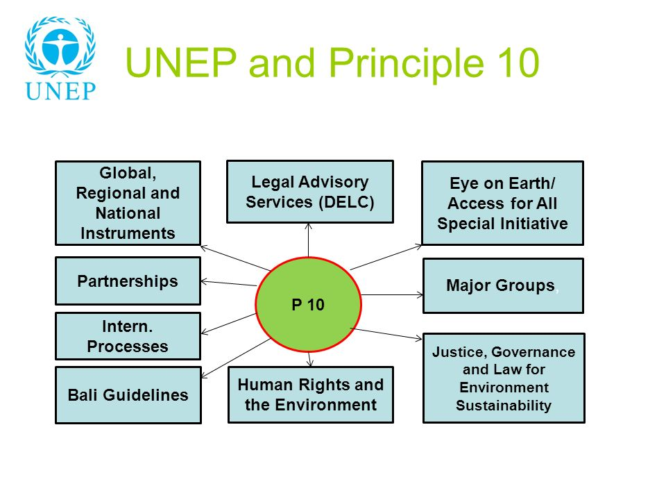 UNEP and Principle 10 P 10 Global, Regional and National Instruments Bali Guidelines Eye on Earth/ Access for All Special Initiative Justice, Governance and Law for Environment Sustainability Legal Advisory Services (DELC) Human Rights and the Environment Partnerships Major Groups, Intern.