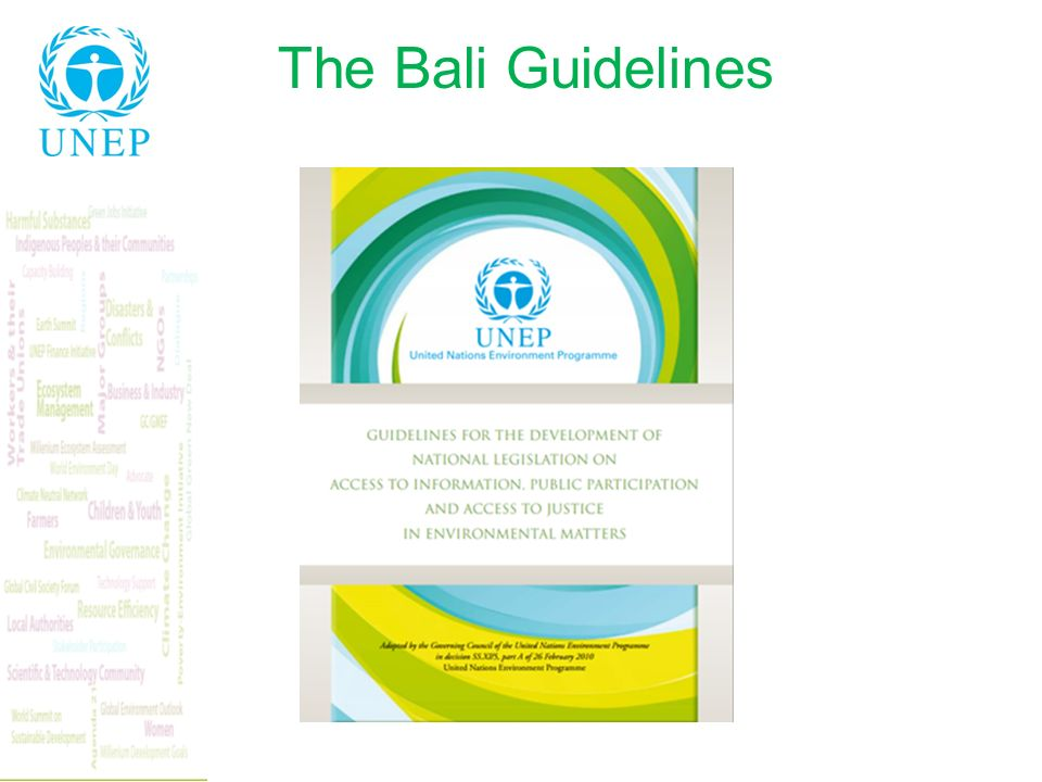 The Bali Guidelines