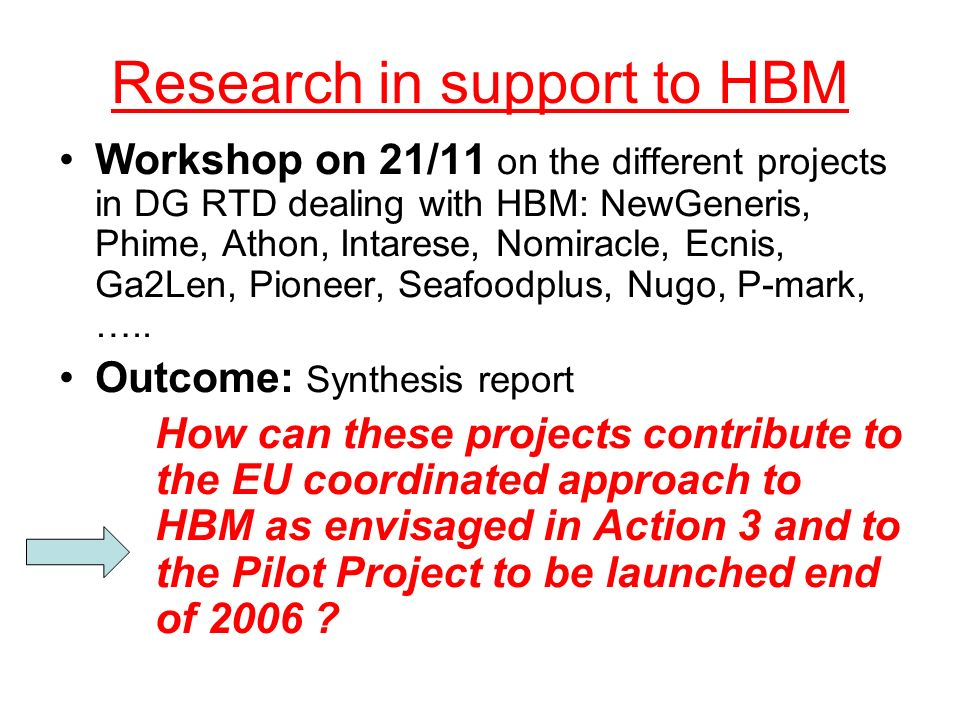 Research in support to HBM Workshop on 21/11 on the different projects in DG RTD dealing with HBM: NewGeneris, Phime, Athon, Intarese, Nomiracle, Ecni