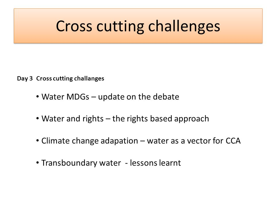 Cross cutting challenges Day 3 Cross cutting challanges Water MDGs – update on the debate Water and rights – the rights based approach Climate change adapation – water as a vector for CCA Transboundary water - lessons learnt