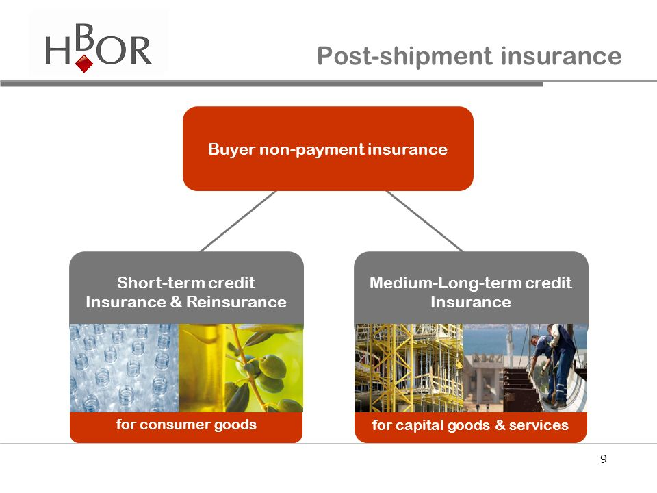 9 for capital goods & services for consumer goods Post-shipment insurance Buyer non-payment insurance Short-term credit Insurance & Reinsurance Medium