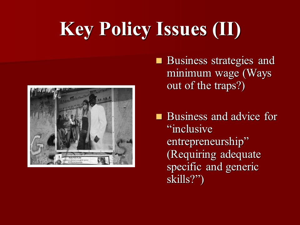 Key Policy Issues (II) Business strategies and minimum wage (Ways out of the traps?) Business strategies and minimum wage (Ways out of the traps?) Business and advice for inclusive entrepreneurship (Requiring adequate specific and generic skills?) Business and advice for inclusive entrepreneurship (Requiring adequate specific and generic skills?)