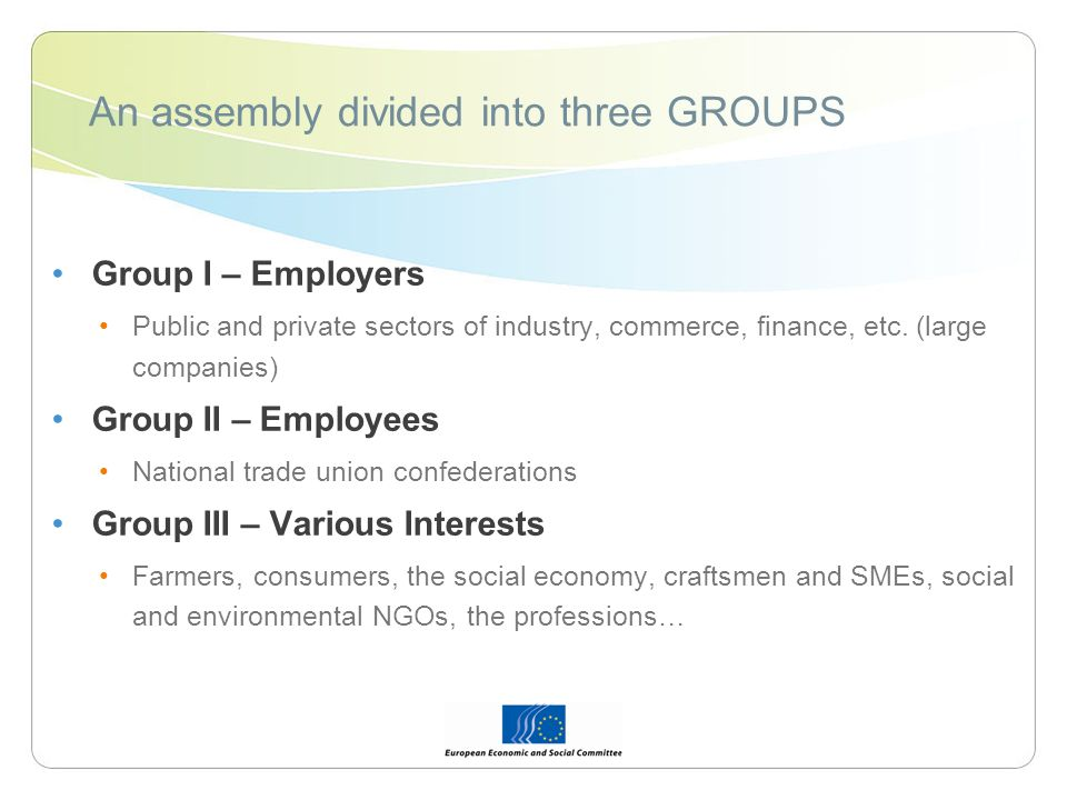 An assembly divided into three GROUPS Group I – Employers Public and private sectors of industry, commerce, finance, etc. (large companies) Group II –