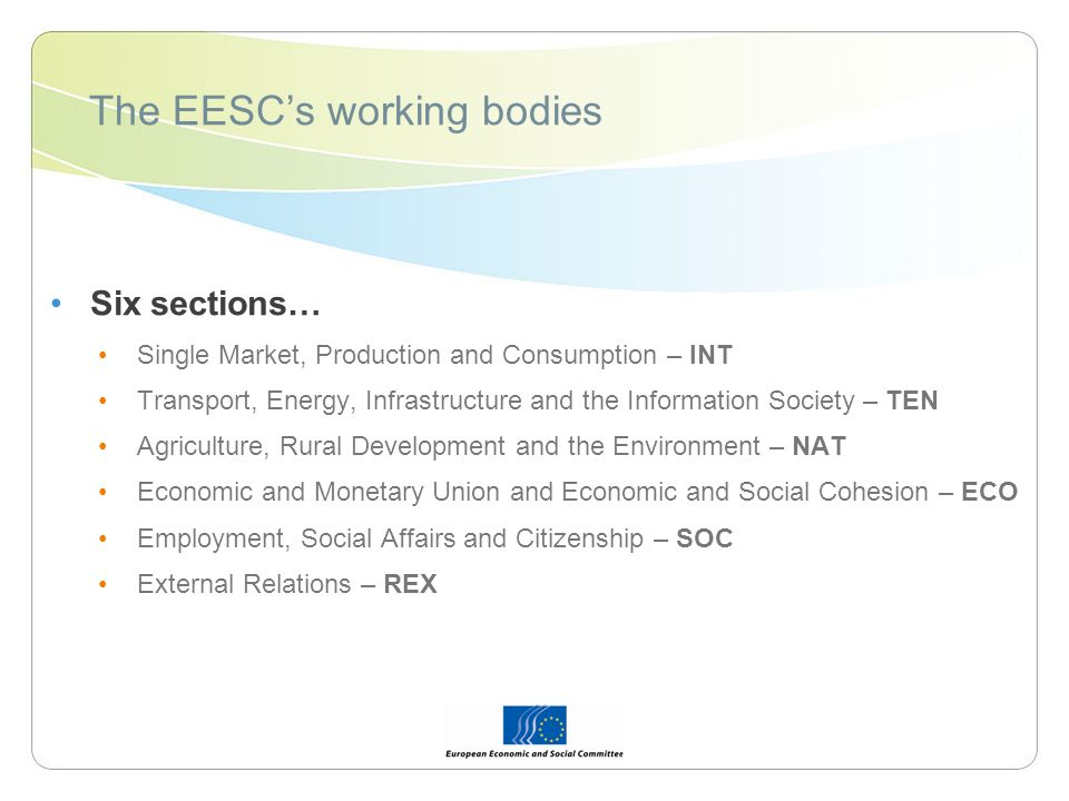 The EESCs working bodies Six sections… Single Market, Production and Consumption – INT Transport, Energy, Infrastructure and the Information Society – TEN Agriculture, Rural Development and the Environment – NAT Economic and Monetary Union and Economic and Social Cohesion – ECO Employment, Social Affairs and Citizenship – SOC External Relations – REX