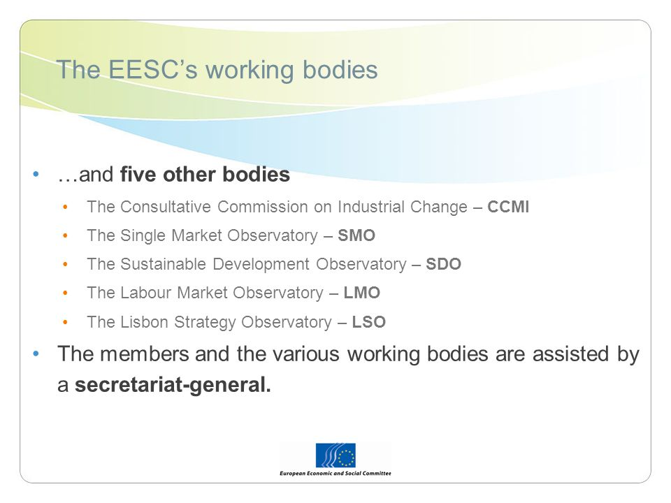 …and five other bodies The Consultative Commission on Industrial Change – CCMI The Single Market Observatory – SMO The Sustainable Development Observa