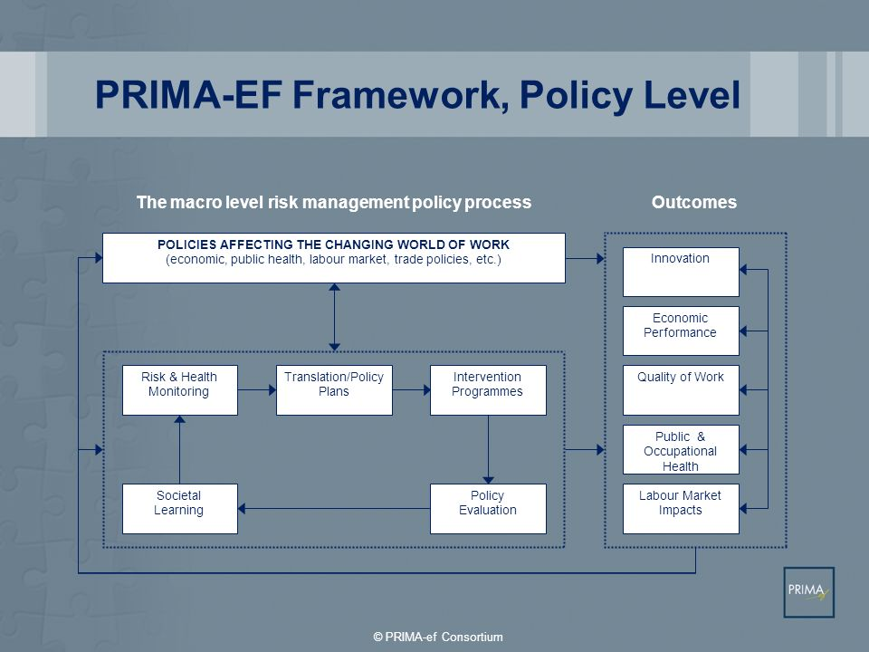 PRIMA-EF Framework, Policy Level POLICIES AFFECTING THE CHANGING WORLD OF WORK (economic, public health, labour market, trade policies, etc.) Risk & H