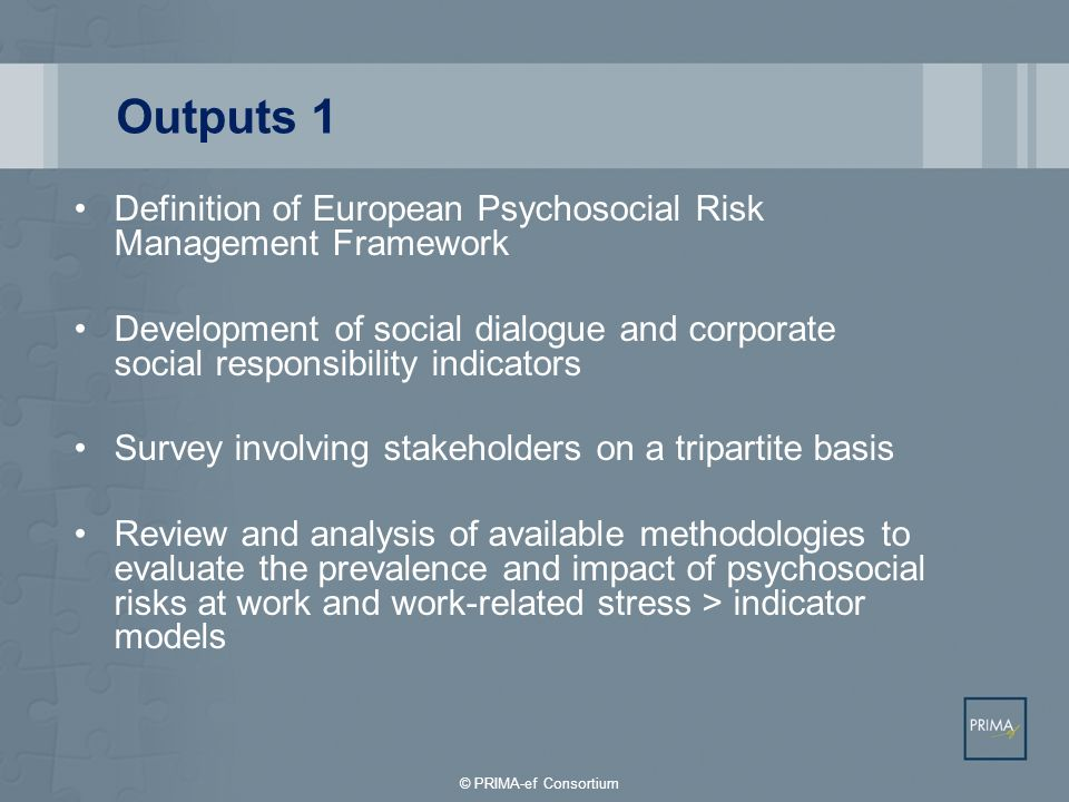 Outputs 1 Definition of European Psychosocial Risk Management Framework Development of social dialogue and corporate social responsibility indicators