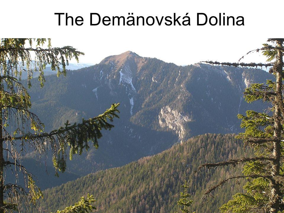 The Demänovská Dolina