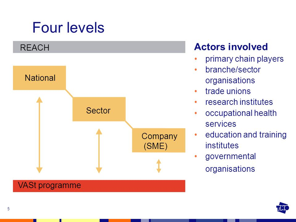 5 Four levels National REACH VASt programme Company (SME) Sector Actors involved primary chain players branche/sector organisations trade unions research institutes occupational health services education and training institutes governmental organisations