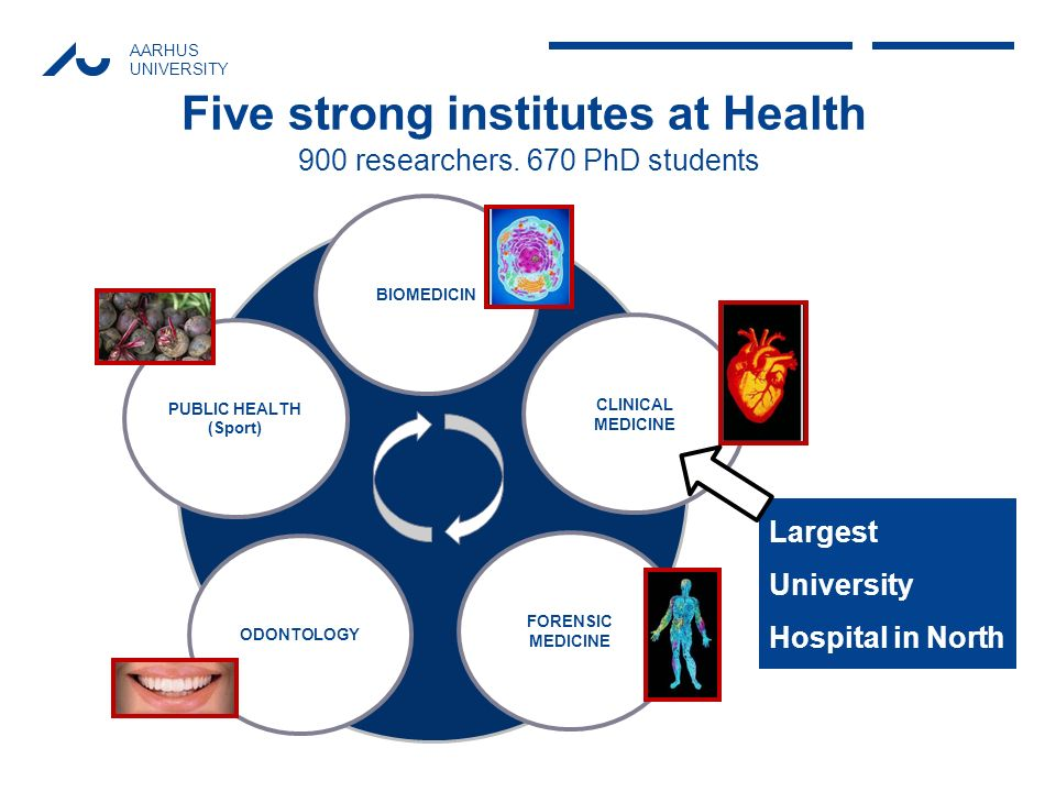 AARHUS UNIVERSITY Five strong institutes at Health BIOMEDICIN PUBLIC HEALTH (Sport) ODONTOLOGY FORENSIC MEDICINE CLINICAL MEDICINE 900 researchers. 67