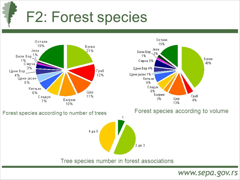 F2: Forest species Forest species according to number of trees Forest species according to volume Tree species number in forest associations