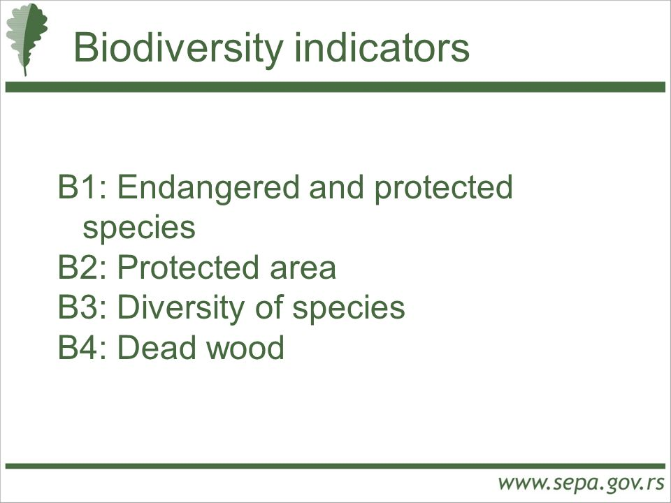 Biodiversity indicators B1: Endangered and protected species B2: Protected area B3: Diversity of species B4: Dead wood