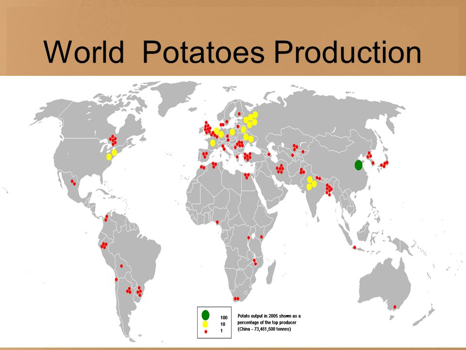 World Potatoes Production