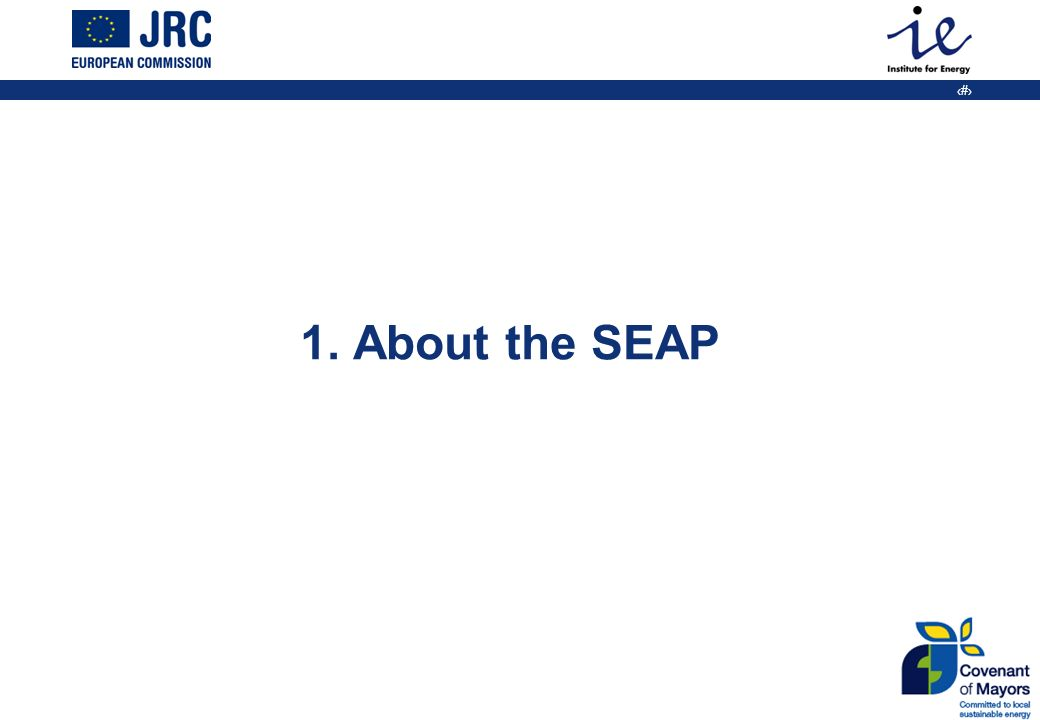 3 1. About the SEAP