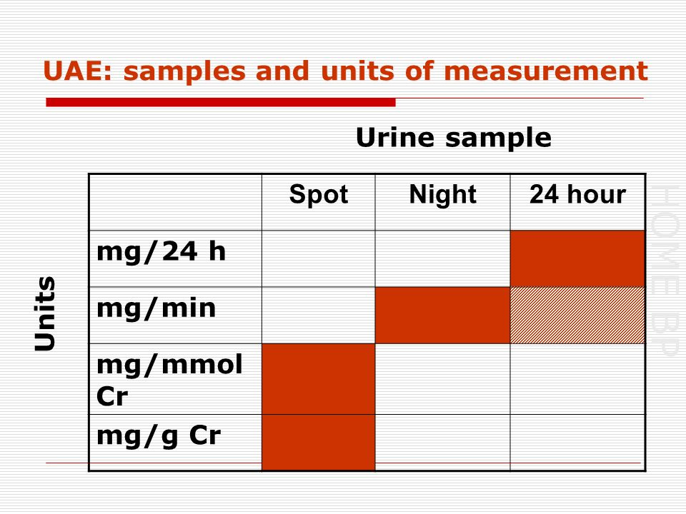 HOME BP UAE: samples and units of measurement SpotNight24 hour mg/24 h mg/min mg/mmol Cr mg/g Cr Urine sample Units