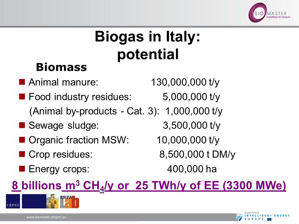 Animal manure: 130,000,000 t/y Food industry residues: 5,000,000 t/y (Animal by-products - Cat. 3): 1,000,000 t/y Sewage sludge: 3,500,000 t/y Organic