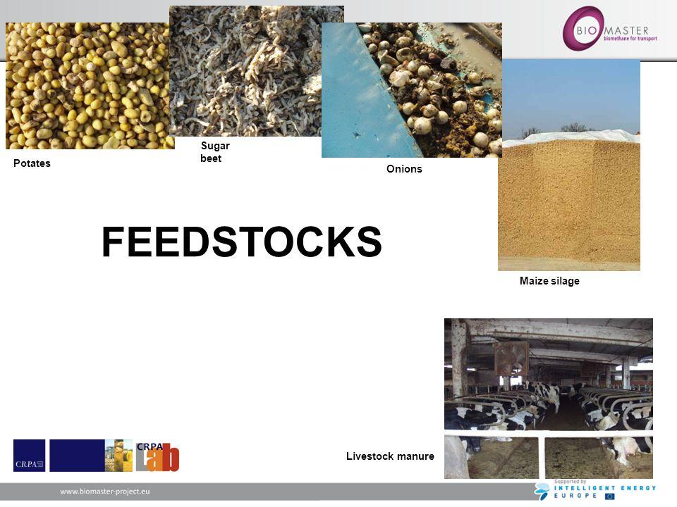 FEEDSTOCKS Potates Sugar beet Onions Maize silage Livestock manure