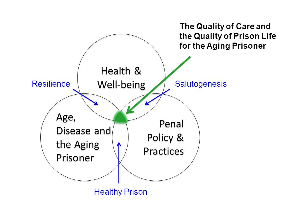 Health & Well-being Health & Well-being Age, Disease and the Aging Prisoner Penal Policy & Practices Penal Policy & Practices ResilienceSalutogenesis