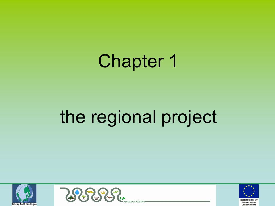 Chapter 1 the regional project