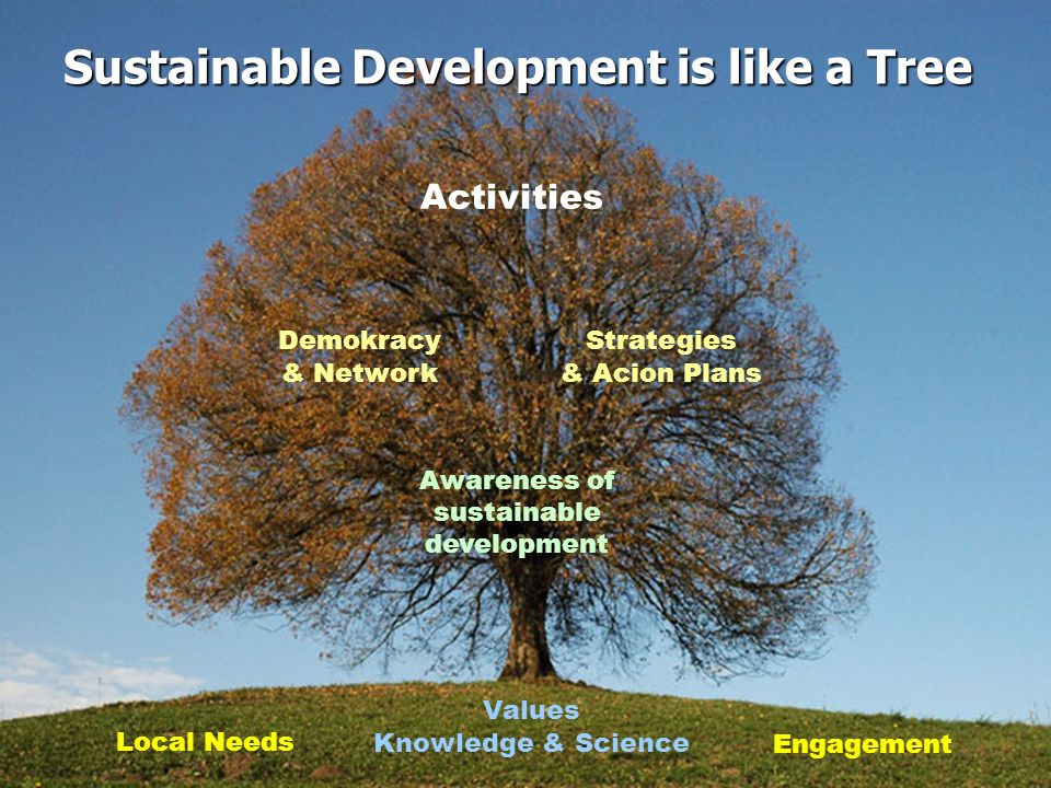 Sustainable Development is like a Tree Values Knowledge & Science Awareness of sustainable development Demokracy & Network Strategies & Acion Plans Ac