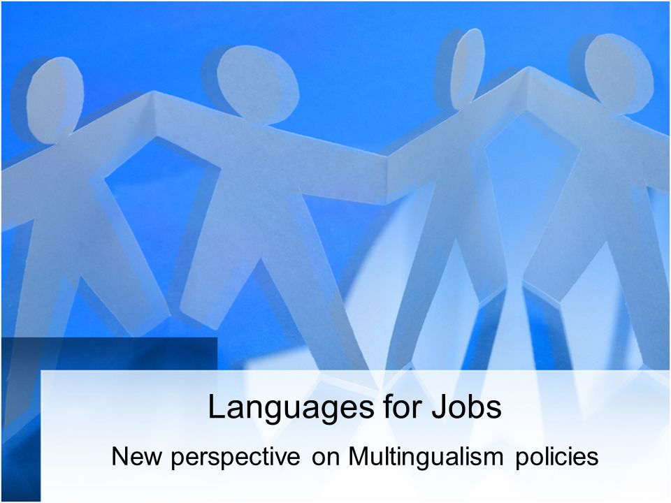 Thematic working group within the field of languages for jobs to establish policy recommendations on how to enhance the role of languages in improving the chances of employment; scope of the group - languages in vocational education and training;