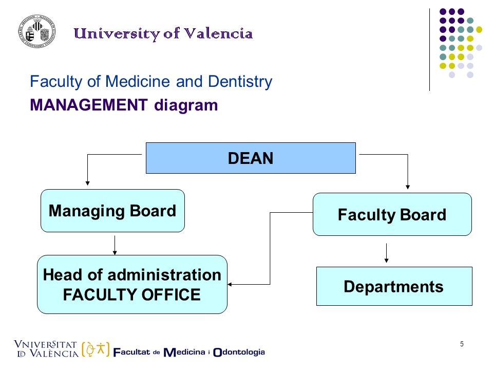 Elena Llueca5 University of Valencia Faculty of Medicine and Dentistry MANAGEMENT diagram DEAN Managing Board Faculty Board Head of administration FACULTY OFFICE Departments