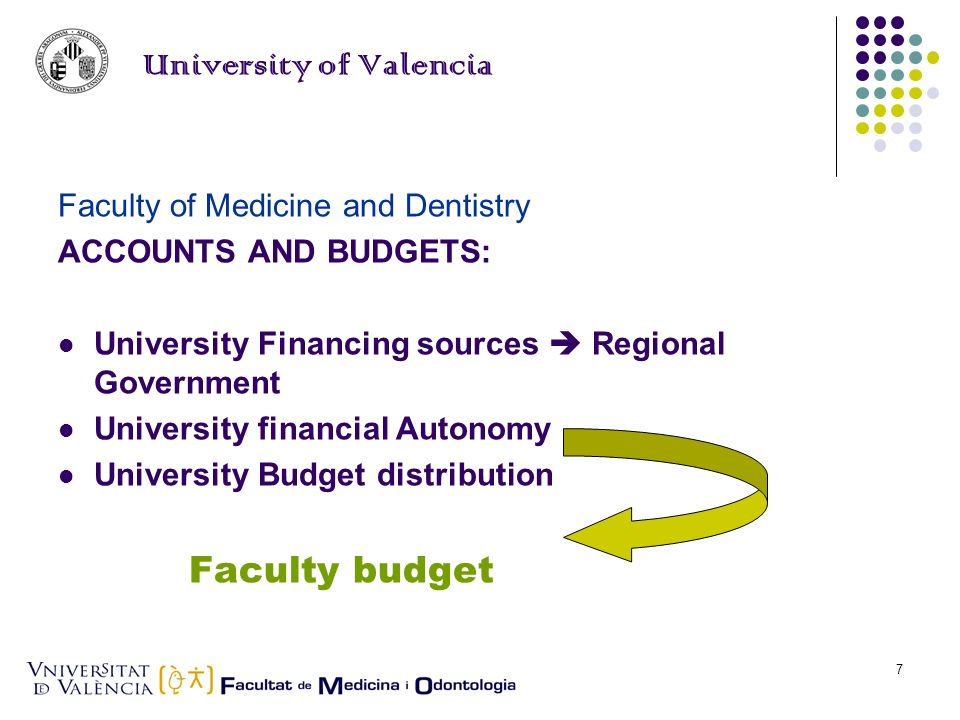 Elena Llueca7 University of Valencia Faculty of Medicine and Dentistry ACCOUNTS AND BUDGETS: University Financing sources Regional Government University financial Autonomy University Budget distribution Faculty budget