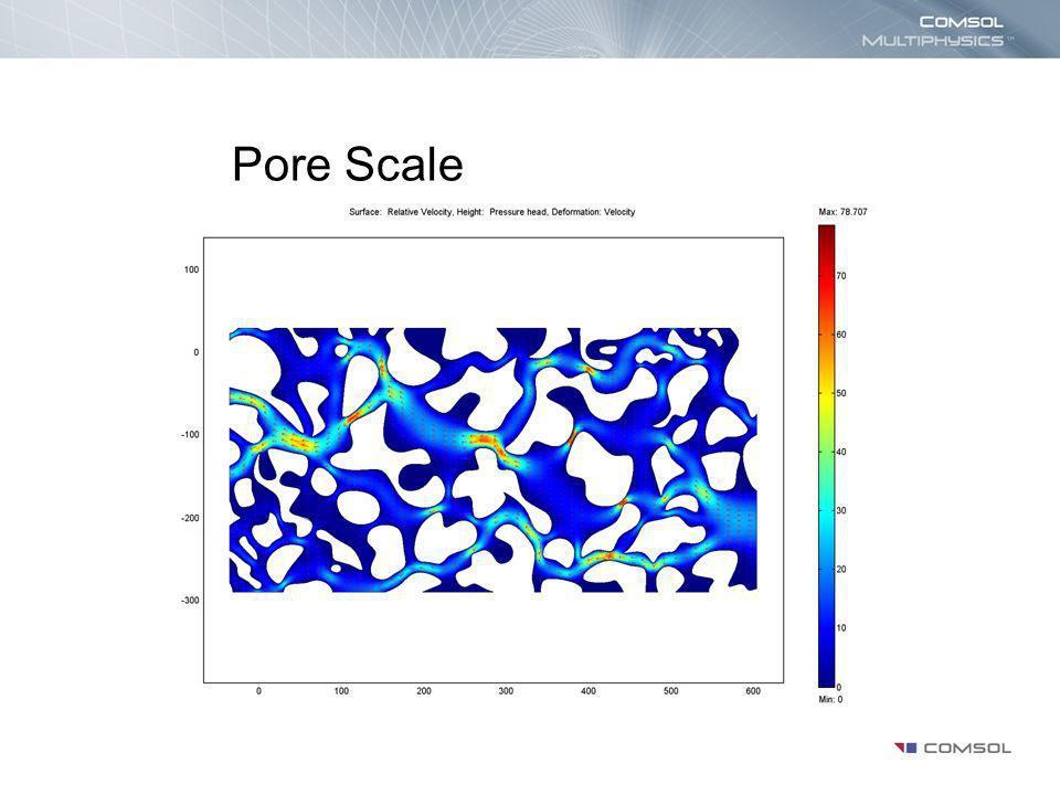 Pore Scale