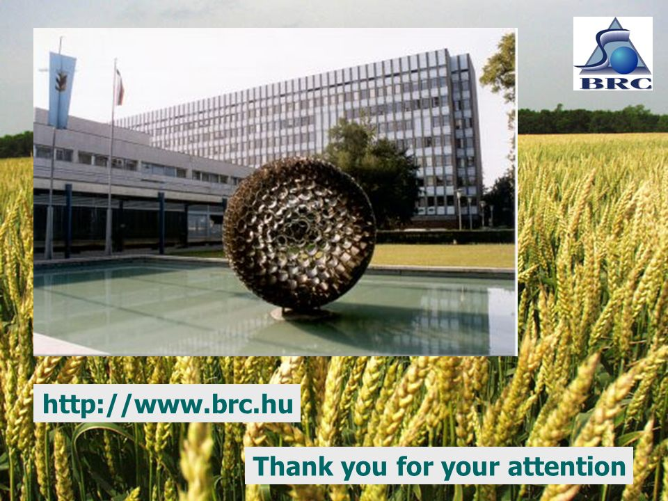 Thank you for your attention http://www.brc.hu