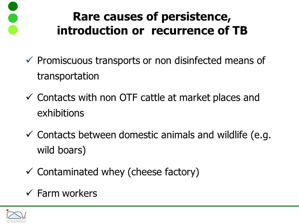 Rare causes of persistence, introduction or recurrence of TB Promiscuous transports or non disinfected means of transportation Contacts with non OTF cattle at market places and exhibitions Contacts between domestic animals and wildlife (e.g.