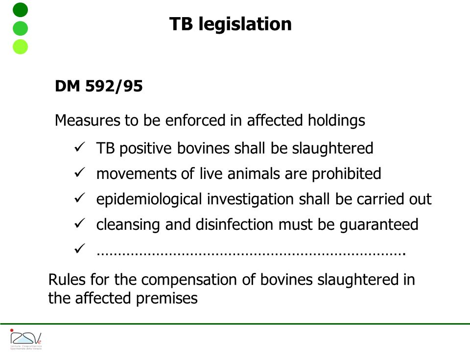 TB legislation DM 592/95 Measures to be enforced in affected holdings TB positive bovines shall be slaughtered movements of live animals are prohibited epidemiological investigation shall be carried out cleansing and disinfection must be guaranteed ……………………………………………………………….
