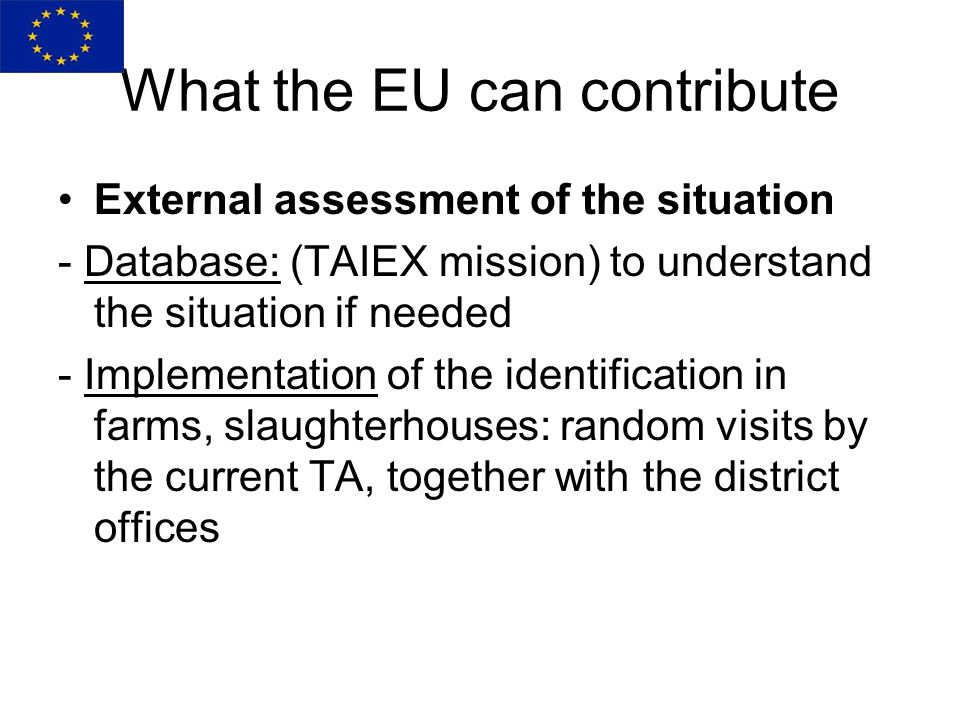 What the EU can contribute External assessment of the situation - Database: (TAIEX mission) to understand the situation if needed - Implementation of the identification in farms, slaughterhouses: random visits by the current TA, together with the district offices