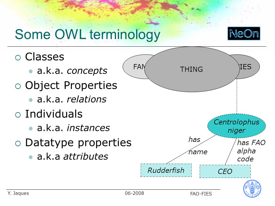 06-2008 FAO-FIES Y. Jaques Some OWL terminology Classes a.k.a.