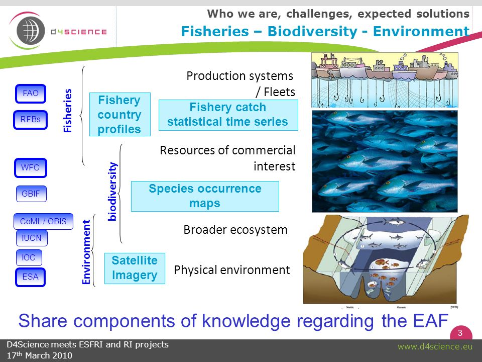 3 www.d4science.eu Share components of knowledge regarding the EAF Production systems / Fleets Resources of commercial interest Broader ecosystem Physical environment Broader ecosystem FAO WFC RFBs CoML / OBIS IOC IUCN Fisheries biodiversity Environment GBIF Satellite Imagery Fishery country profiles Fishery catch statistical time series Species occurrence maps ESA Who we are, challenges, expected solutions Fisheries – Biodiversity - Environment D4Science meets ESFRI and RI projects 17 th March 2010
