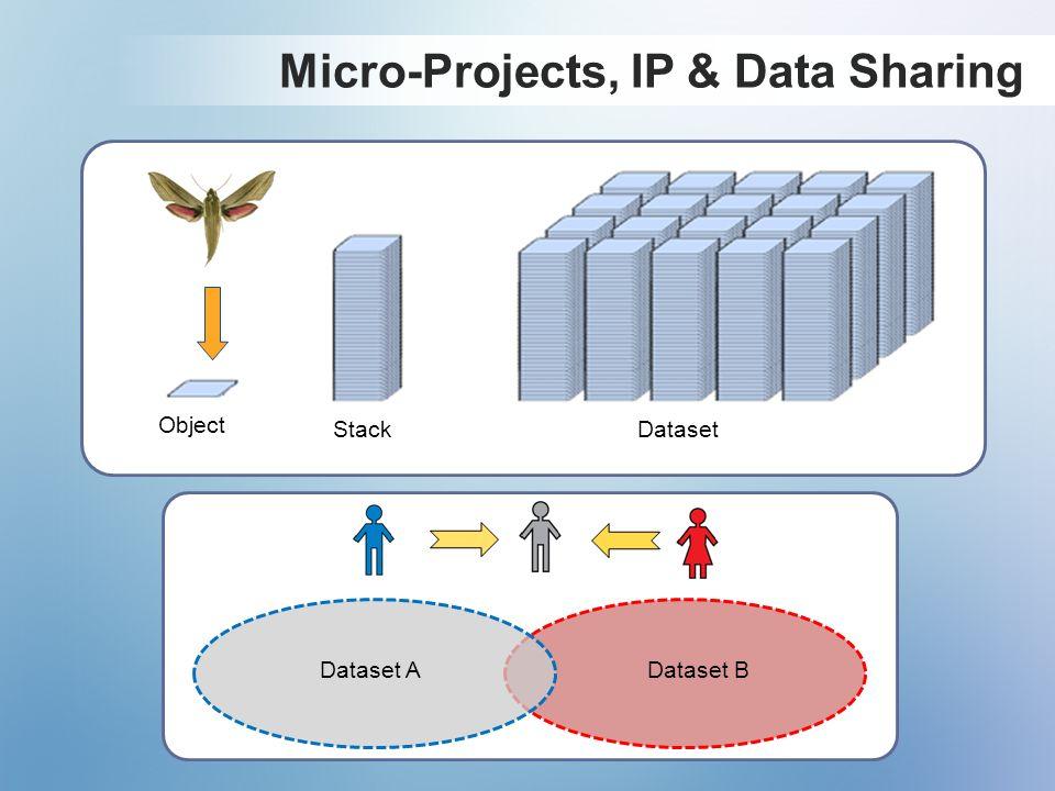 Dataset BDataset A Micro-Projects, IP & Data Sharing Object StackDataset