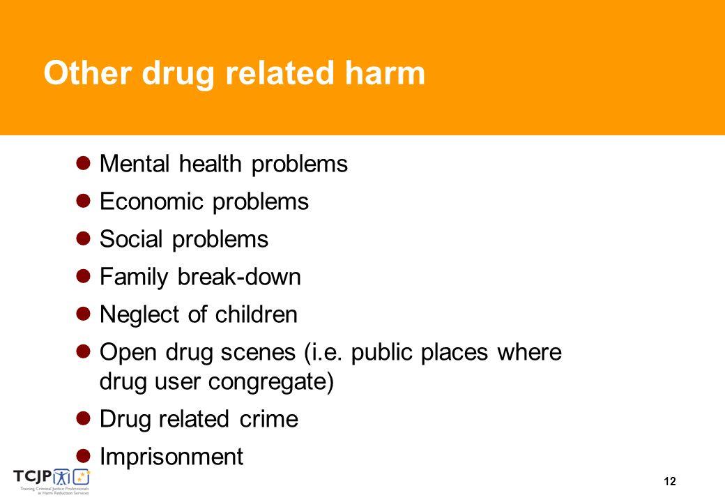 12 Other drug related harm Mental health problems Economic problems Social problems Family break-down Neglect of children Open drug scenes (i.e. publi