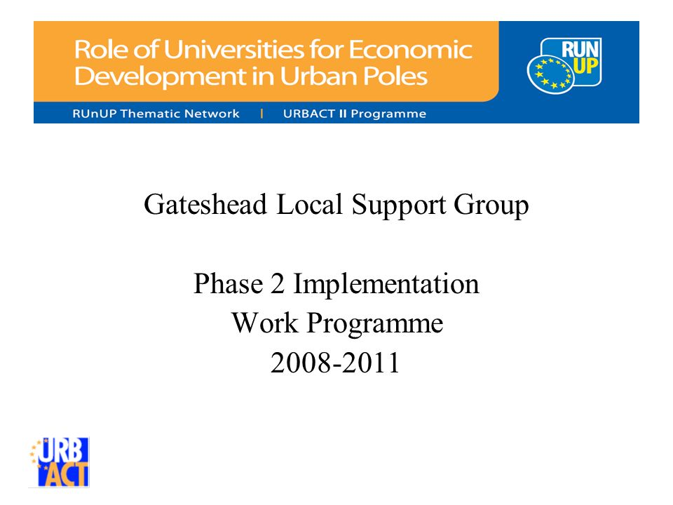 Gateshead Local Support Group Phase 2 Implementation Work Programme 2008-2011