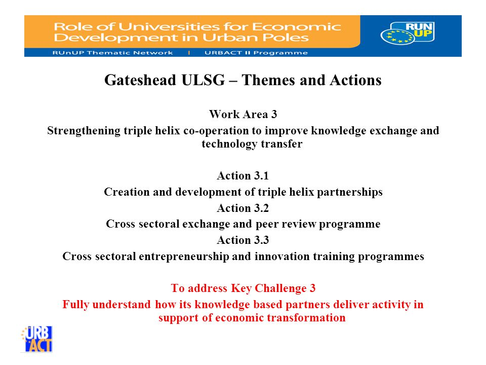 Gateshead ULSG – Themes and Actions Work Area 3 Strengthening triple helix co-operation to improve knowledge exchange and technology transfer Action 3.1 Creation and development of triple helix partnerships Action 3.2 Cross sectoral exchange and peer review programme Action 3.3 Cross sectoral entrepreneurship and innovation training programmes To address Key Challenge 3 Fully understand how its knowledge based partners deliver activity in support of economic transformation