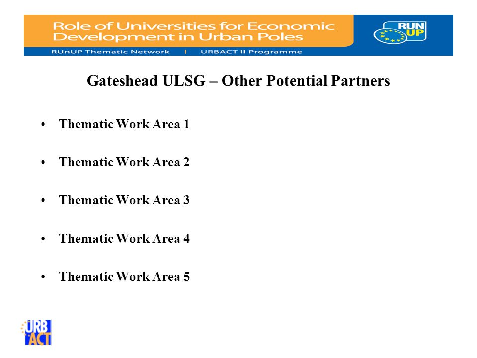 Gateshead ULSG – Other Potential Partners Thematic Work Area 1 Thematic Work Area 2 Thematic Work Area 3 Thematic Work Area 4 Thematic Work Area 5