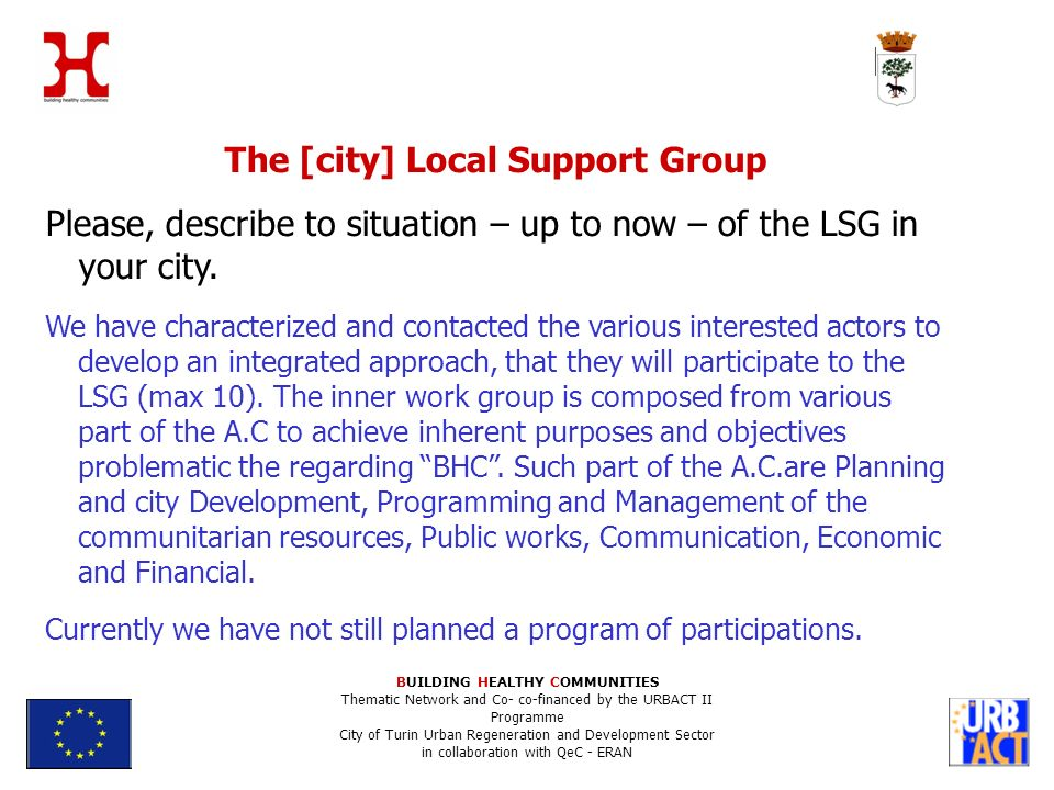 The [city] Local Support Group Please, describe to situation – up to now – of the LSG in your city.