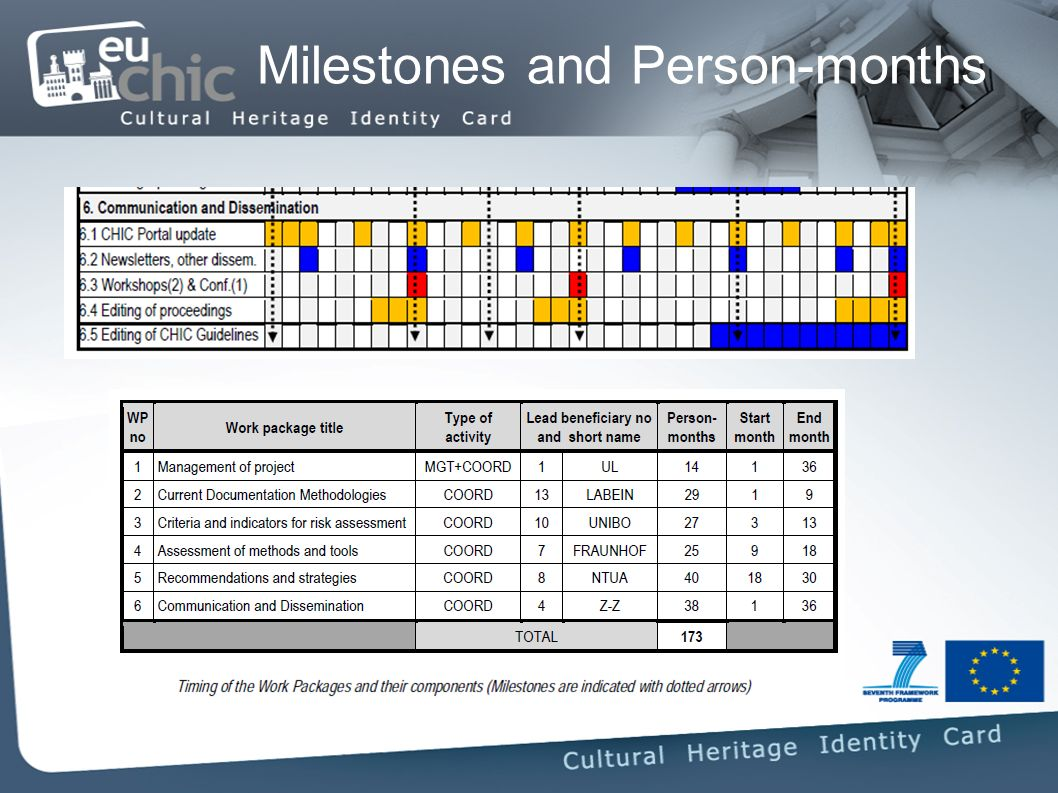 Milestones and Person-months