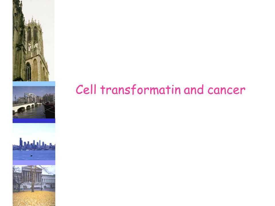 Cell transformatin and cancer