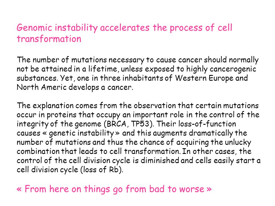 Genomic instability accelerates the process of cell transformation The number of mutations necessary to cause cancer should normally not be attained in a lifetime, unless exposed to highly cancerogenic substances.